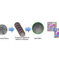 Новації | Електронна мікроскопія